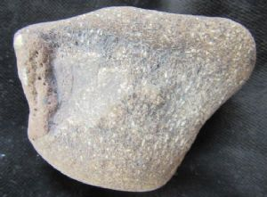 IGUANODON - WATERWORN VERTEBRA - CRETACEOUS, ISLE OF WIGHT